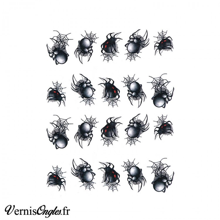 Water decals araignées