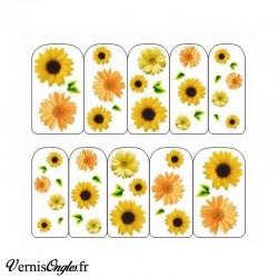 Water decals tournesols