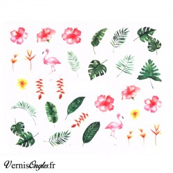 Water Decals motifs tropicaux