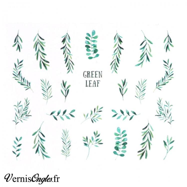Water decals feuilles