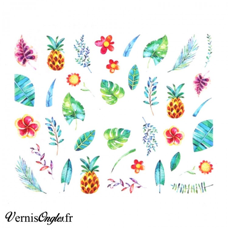 Water decals motifs tropicaux